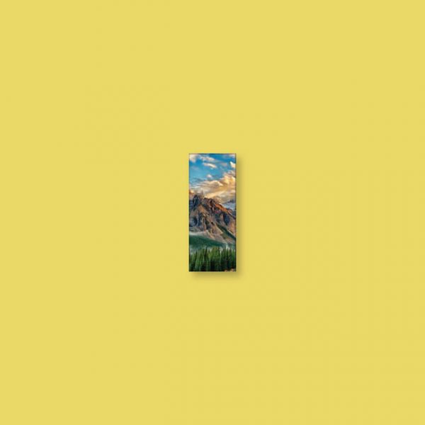 Toile 12 x 30 | Décor Mon Mur